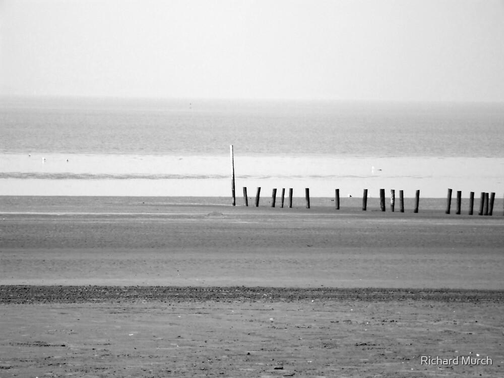 Low tide by Richard Murch