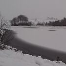 The Loch & East Mains Castle, East Kilbride by MagsWilliamson