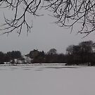 East Mains Castle & The Loch In Winter, East Kilbride by MagsWilliamson