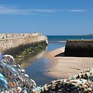 St Andrews Harbour by Kasia-D
