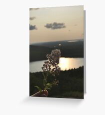 Flower Over Mountains Photo Greeting Card