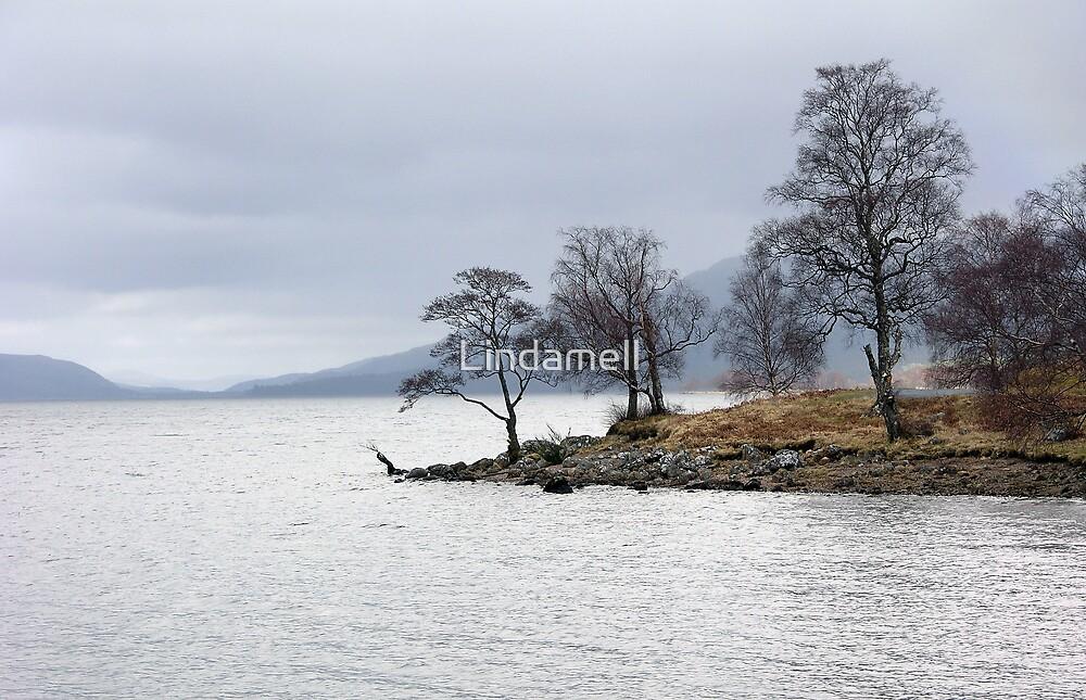 Trees of Loch Rannoch  by Lindamell