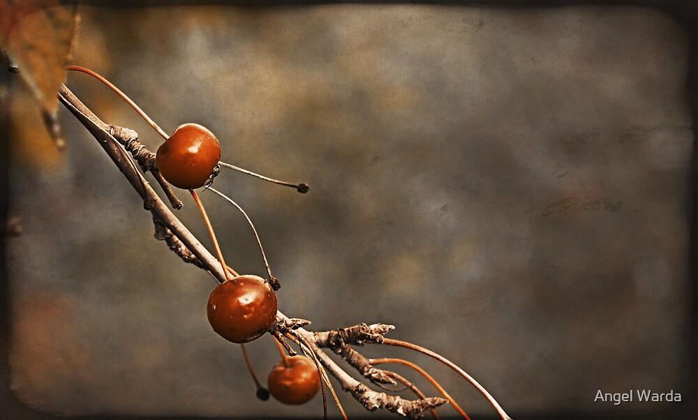 three berries by Angel Warda