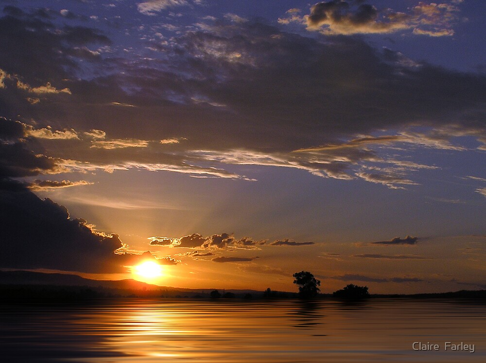 A Rosewood Sunset by Claire  Farley