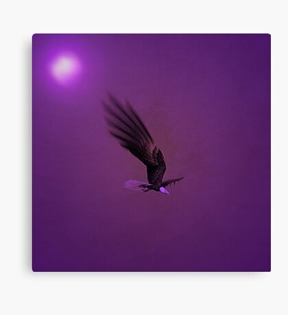 Once In A Purple Moon...... Canvas Print