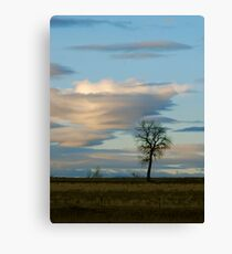 Lenticular Cloud Canvas Print