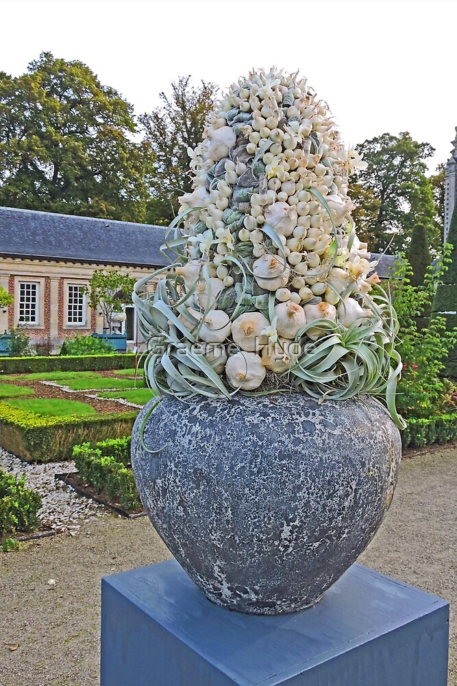 A Scented Garden by Graeme  Hyde