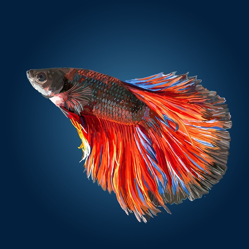 Red and Blue Betta Fish\