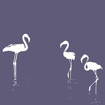 We Are The Three Flamingoes Silhouette In White by taiche