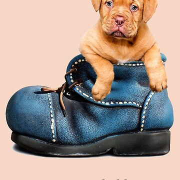Adorable iCuddle French Mastiff by Shana1065