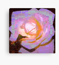 Square rose Canvas Print