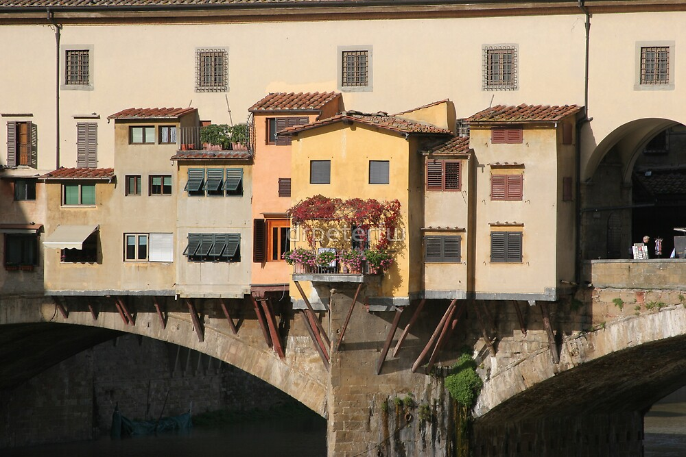 Ponte Veccia by drpeterfw
