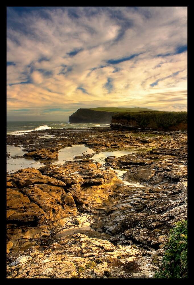 Wild New Zealand Coastline... by hazy