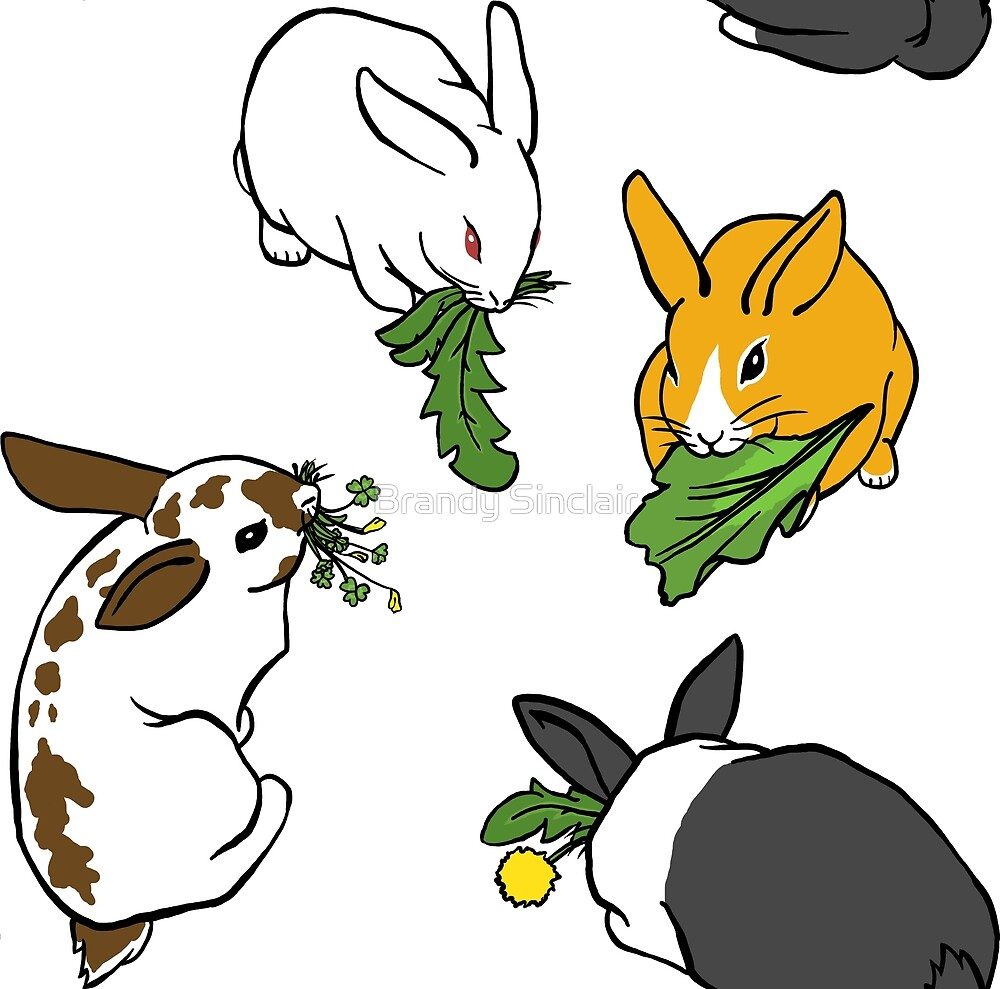 Four Bunnies Snacking by Brandy Sinclair