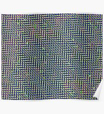 Animal Collective - Merriweather Post Pavilion (155MP Cover) Poster