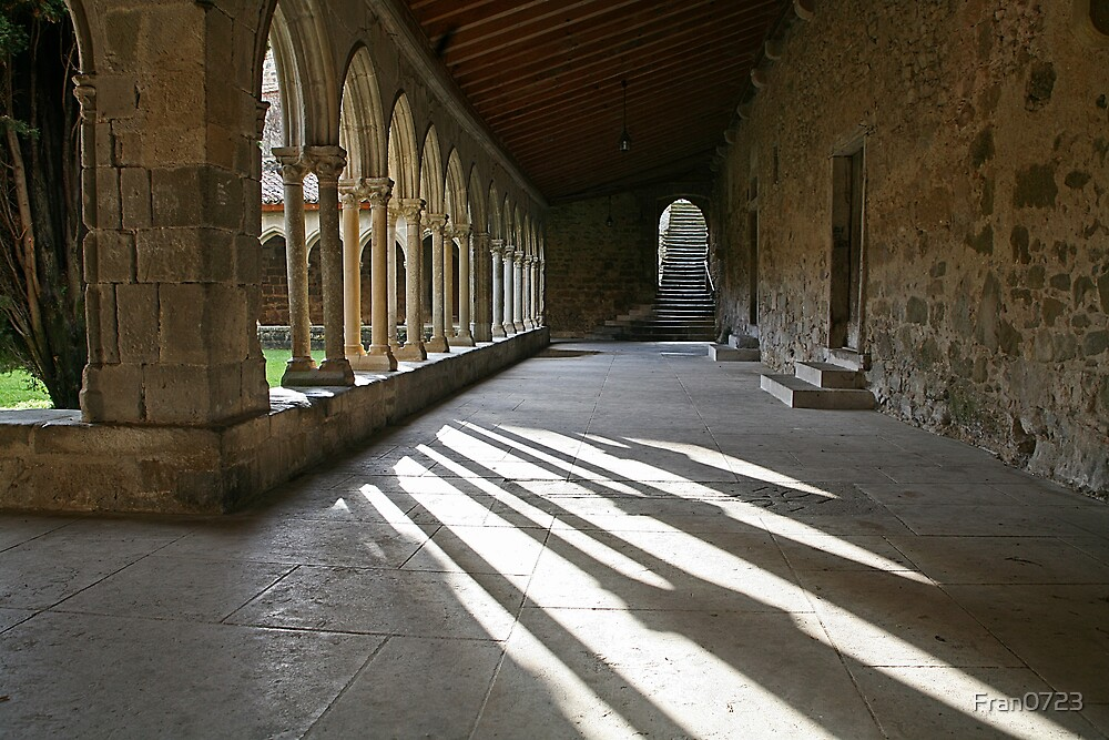 Saint-Hilaire: The cloister by Fran0723