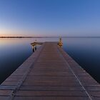 Lake Bonney - Barmera, South Australia by BenClarkImagery