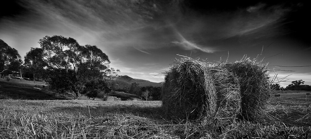 Baled Up by Mike Emmett