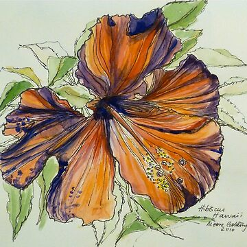 Red hibiscus Hawaii: pen and wash. by emgolding