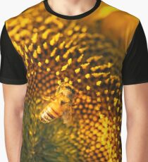 Sunflowers in a field in the afternoon. Graphic T-Shirt