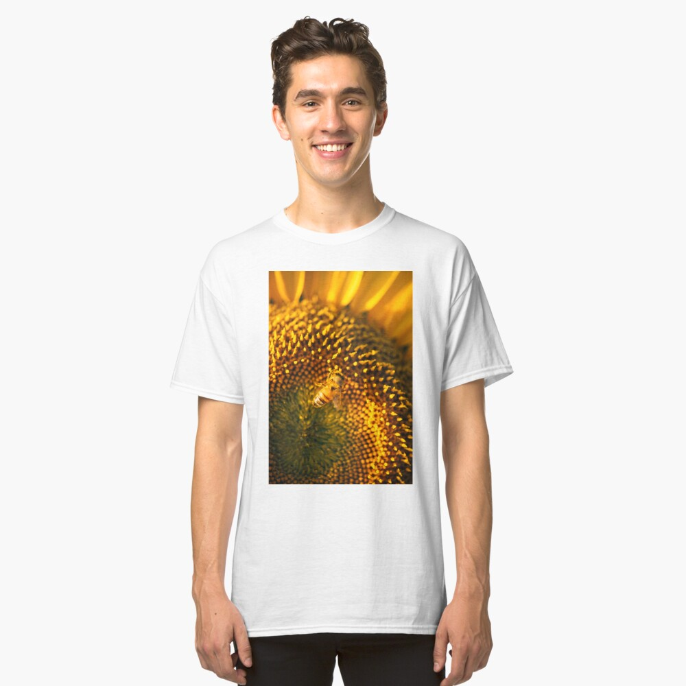 Sunflowers in a field in the afternoon. Classic T-Shirt Front