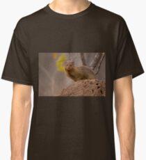 Dwarf mongoose, South Africa Classic T-Shirt