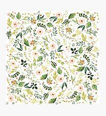 Lámina fotográfica Flores botánicas de primavera