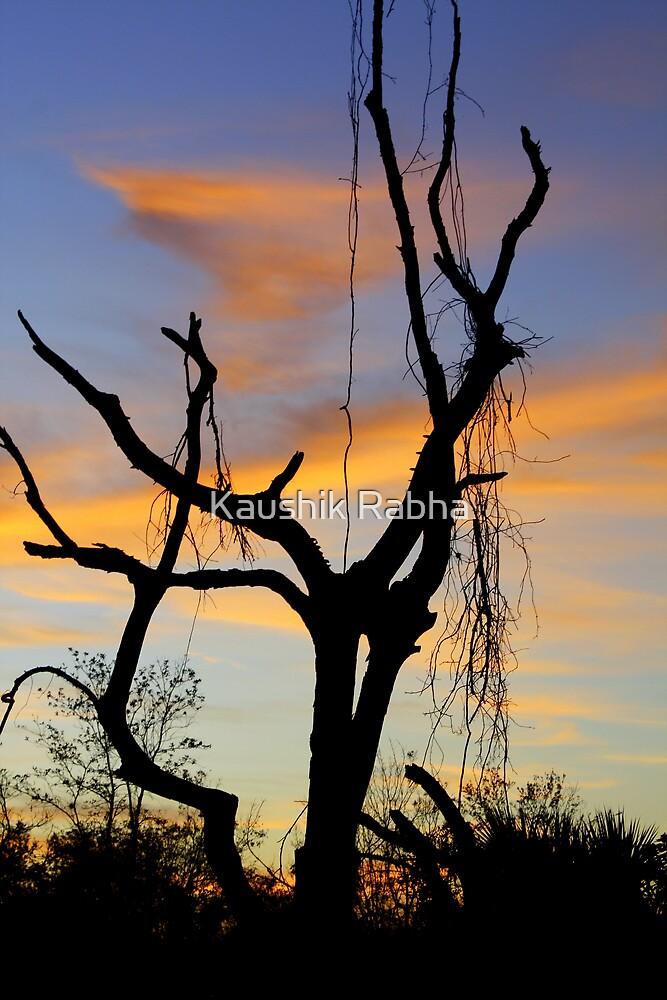 Waiting for spring by Kaushik Rabha