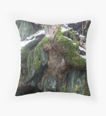 Root System / Wurzelwerk Throw Pillow