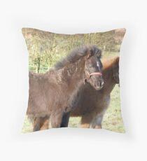 Welsh Mountain Ponys Throw Pillow