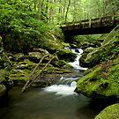 Waterfall and Bridge by shotzbyjay