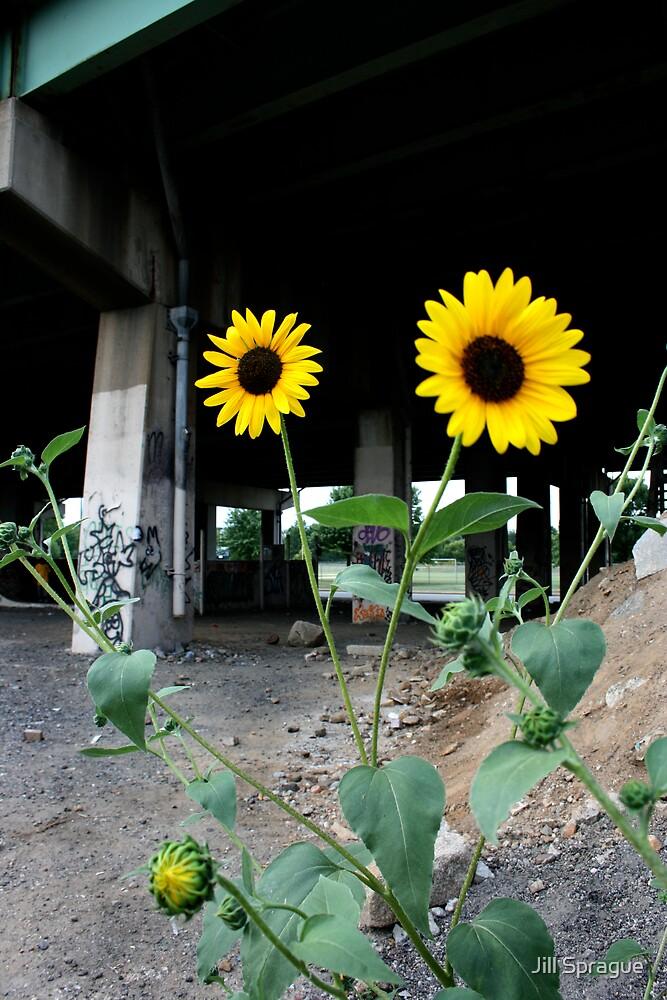 Underpass by Jill Sprague