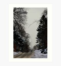 View from Forest Hill Toronto Ontario Canada.. Art Print