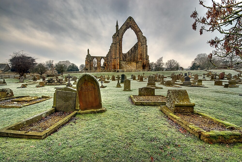 Bolton Abbey, Wharfedale by Stephen Liptrot