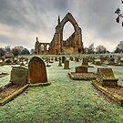 Bolton Abbey, Wharfedale by Steve  Liptrot