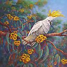 'Sulphur Crested Cockatoo' by Helen Miles