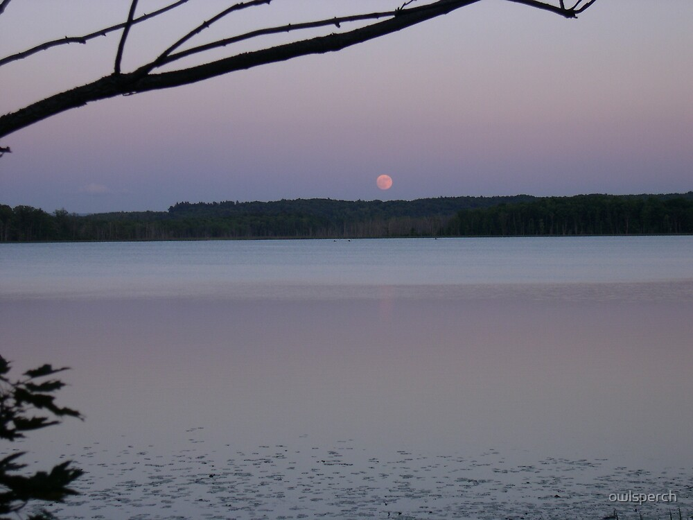 Moon Rise Over Round Lake by owlsperch