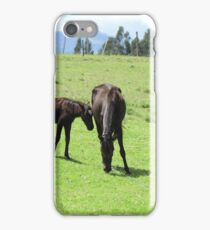 Mare and Colts on a Hill iPhone Case/Skin