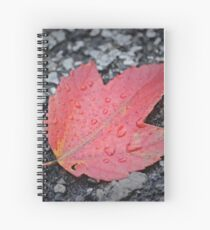 The Last Fall Leaf Spiral Notebook