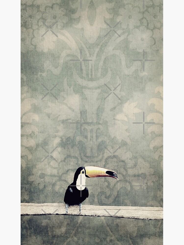 bohemian toucan by inourgardentoo