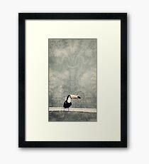 bohemian toucan Framed Print