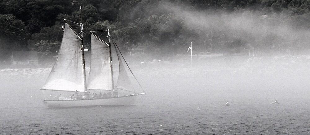 Bearskin Neck Sailboat by acpolkowski