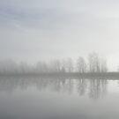 Mist by julie08