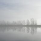 Mist by Bente Agerup