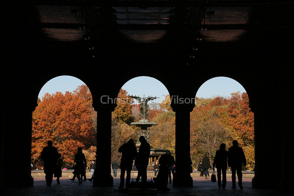 Central Park by Christopher Wilson