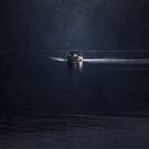 Night Fishing by Mary Ann Reilly