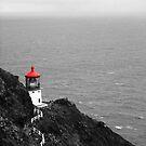 Makapu'u Point Lighthouse by J. Sprink