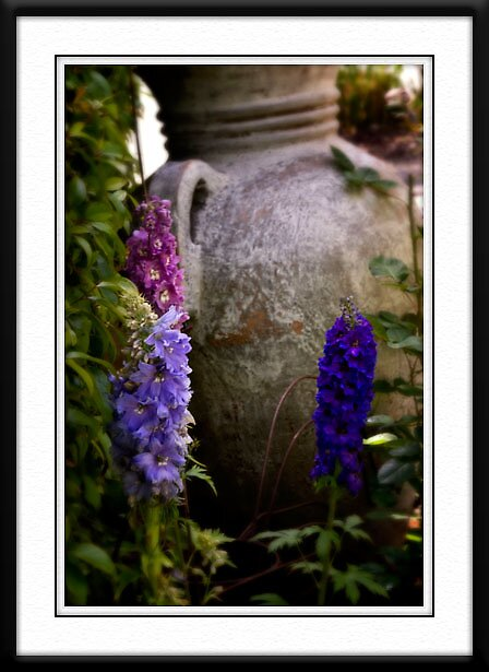 Dawn's Garden #2 by BOB SNELL