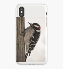 Downy Woodpecker On A Post iPhone Case/Skin