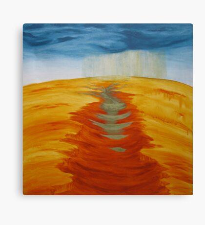 SUDDEN DOWNPOUR Canvas Print
